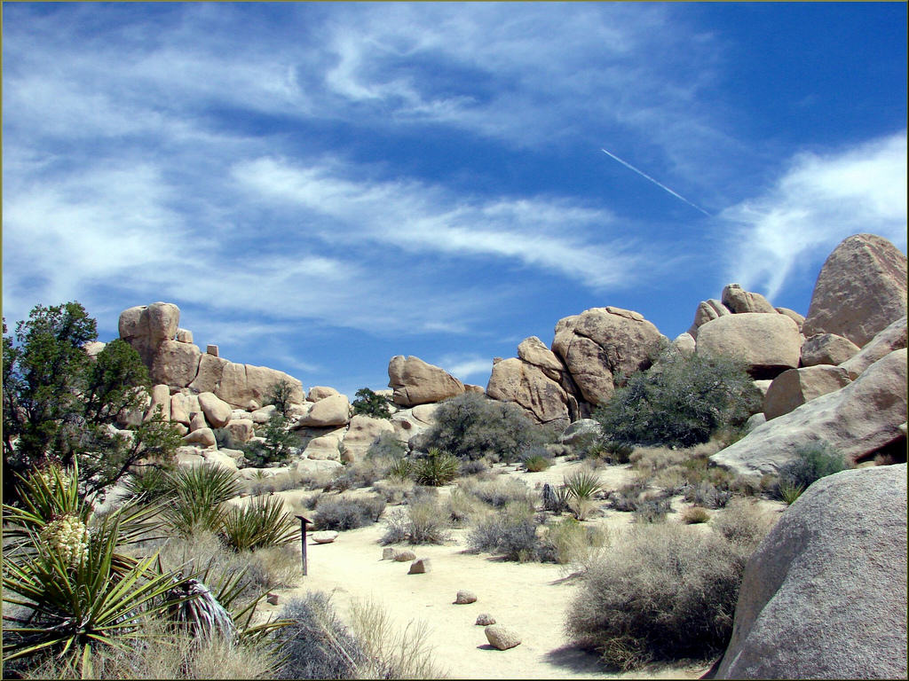 hidden valley joshua tree np 41313 My Laughing Place